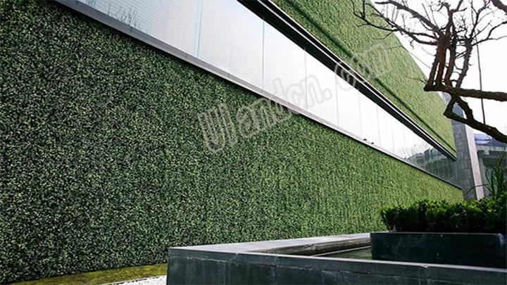 单一植物仿真植物墙