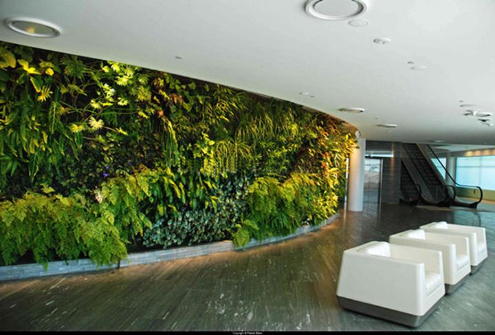 商场的室内仿真植物墙