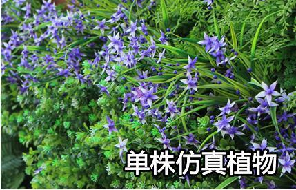 单株仿真植物