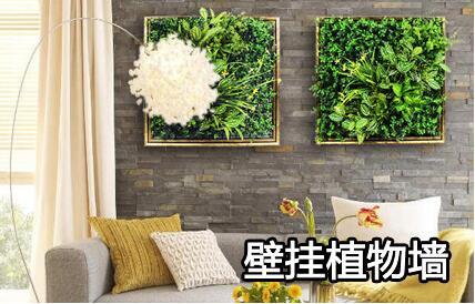 壁挂仿真植物