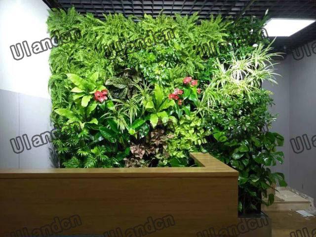 办公前台的仿真植物墙装饰