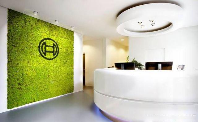 公司前台永生苔藓logo形象墙