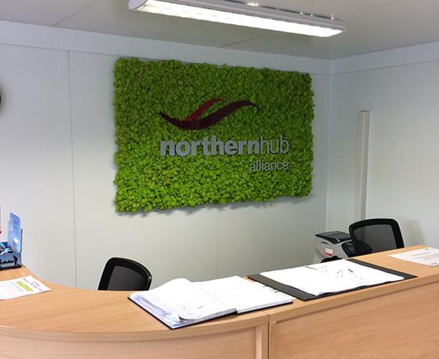 办公室永生苔藓logo形象墙