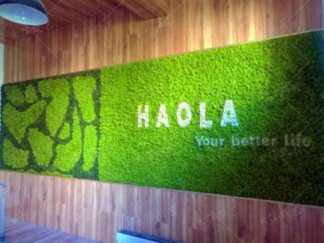 公司永生苔藓logo形象墙