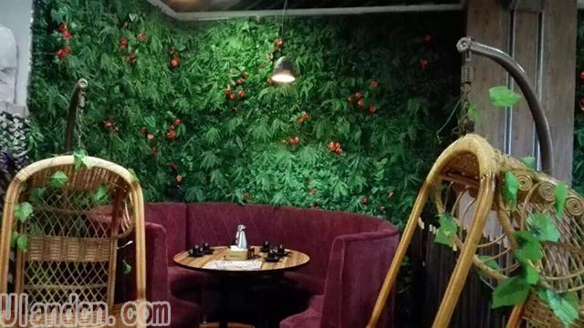 仿真植物墙厂家-优兰德
