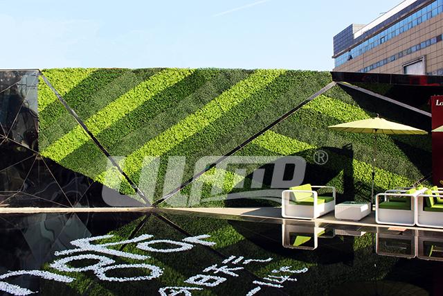 龙湖地产仿真植物墙效果图