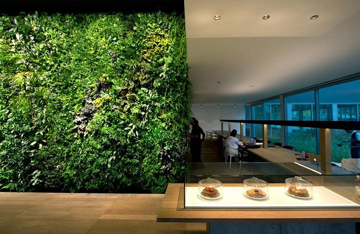 餐饮行业植物背景墙