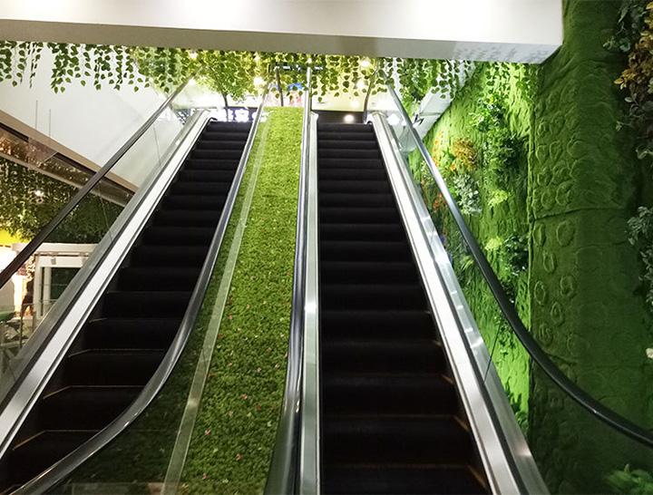 扶手电梯创意植物装饰