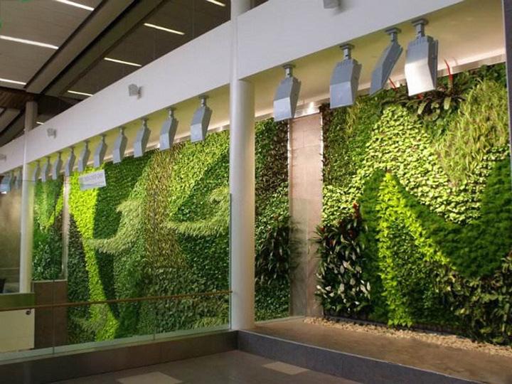 室内墙面植物垂直绿化装饰