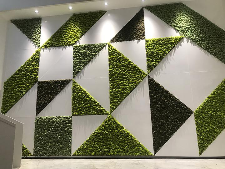 简约型苔藓墙效果图