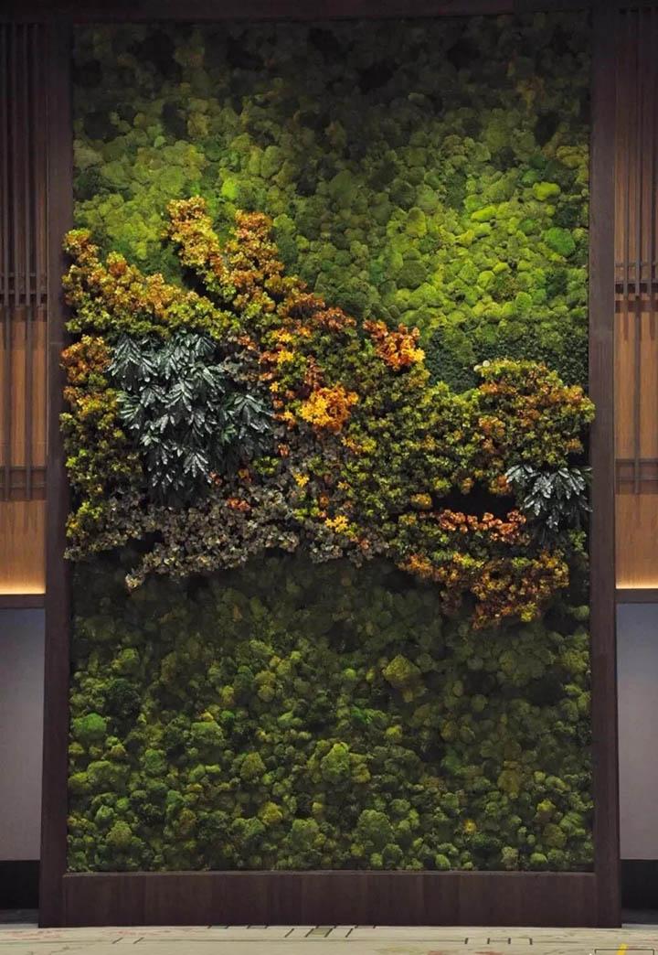 苔藓植物墙加仿真植物