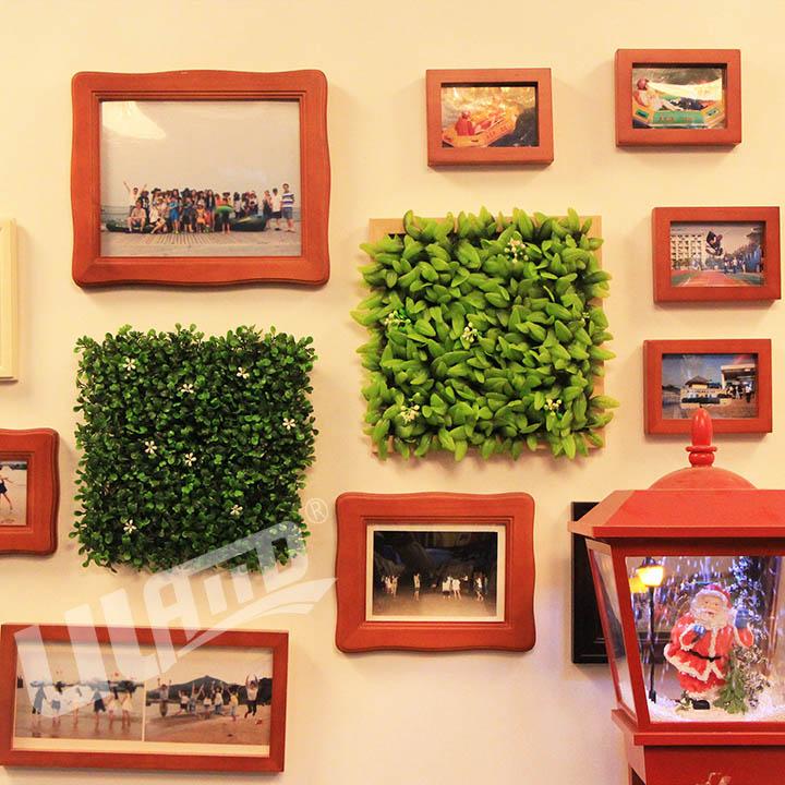 办公室墙面挂相框植物