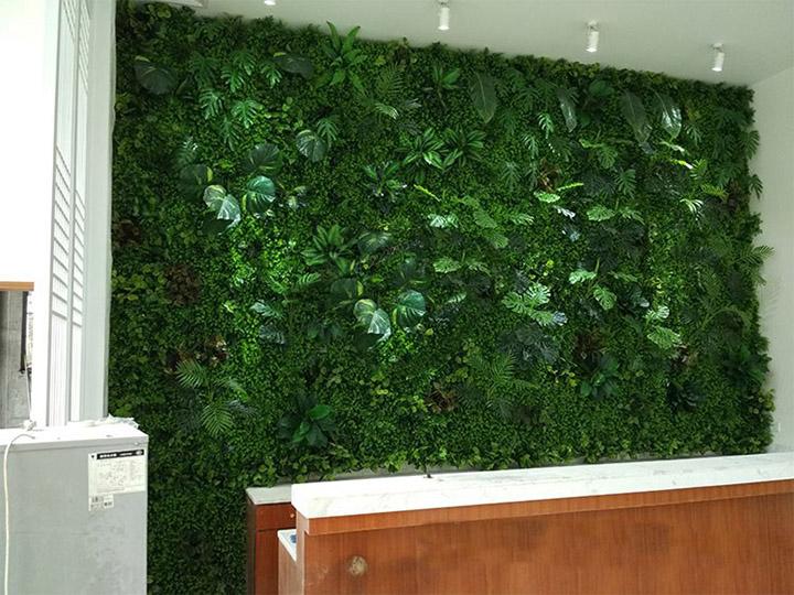 办公室前台垂直绿化植物墙