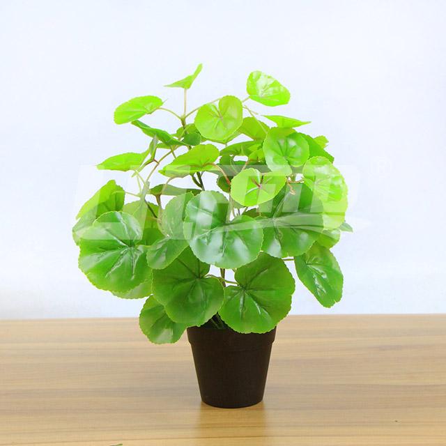 仿真小盆栽绿海棠