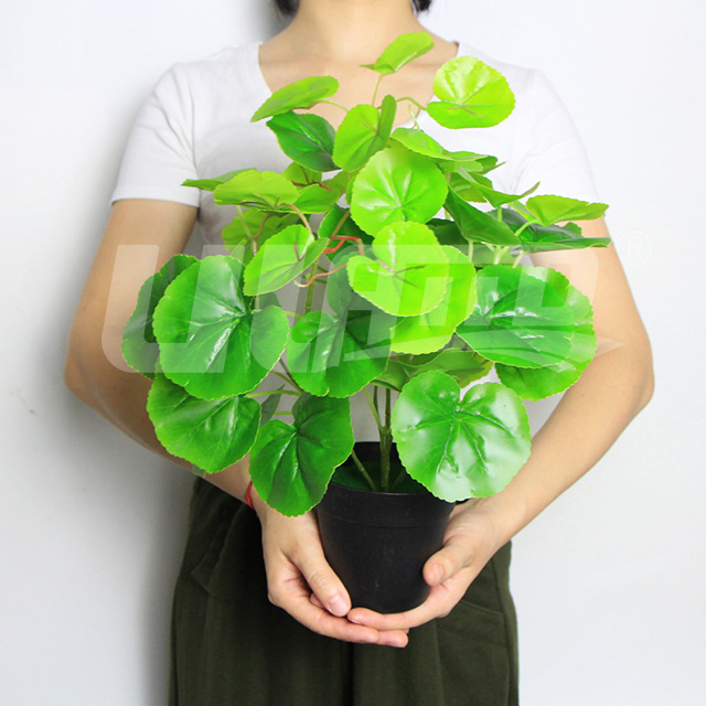 仿真盆栽绿海棠