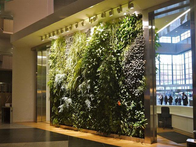 绿色仿真植物