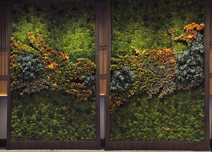 立体苔藓植物墙